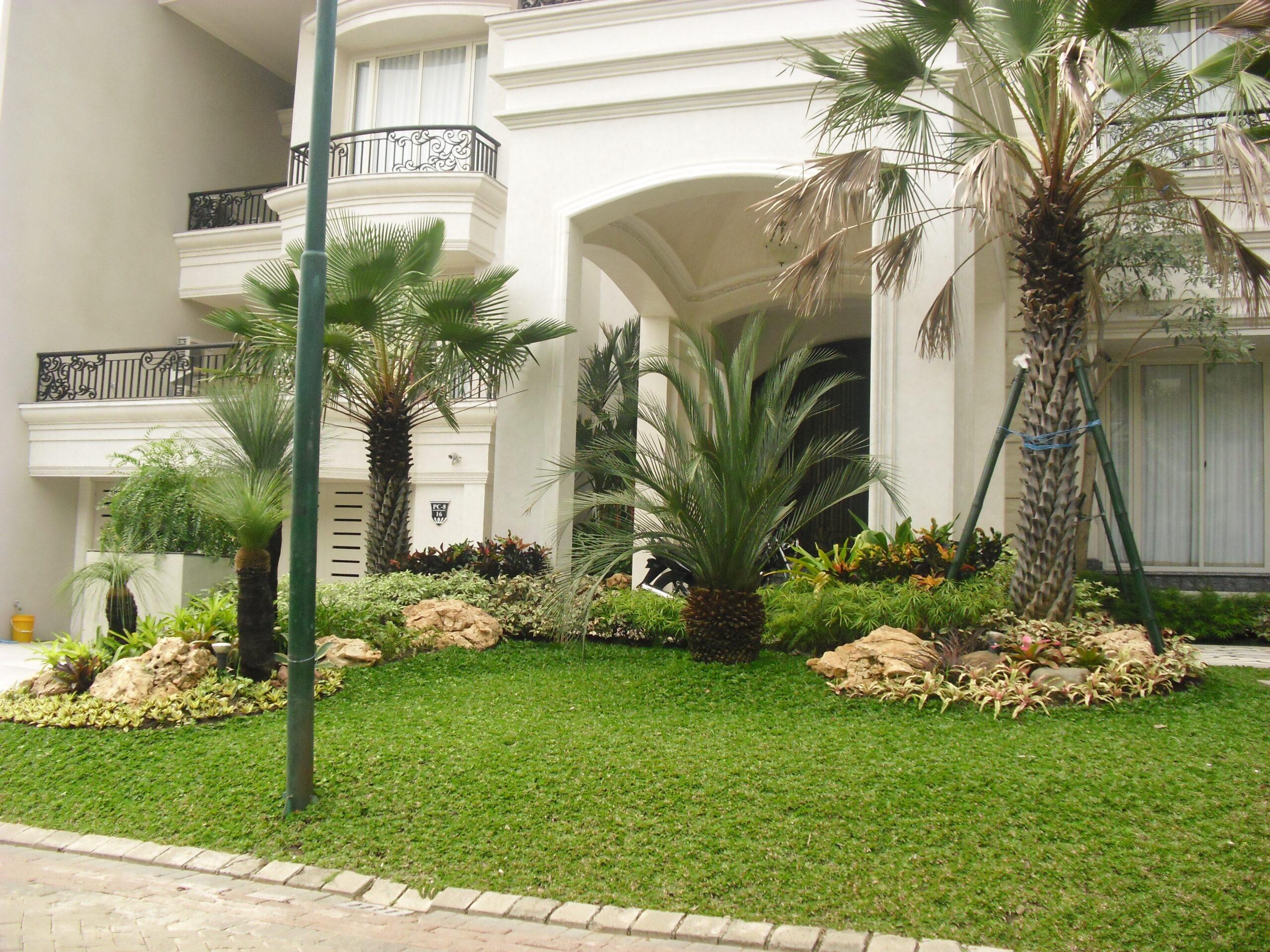 Jasa Tukang Kebun dan Taman Rumah Surabaya dan Sidoarjo