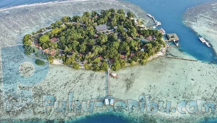 Tamasya pulau pari