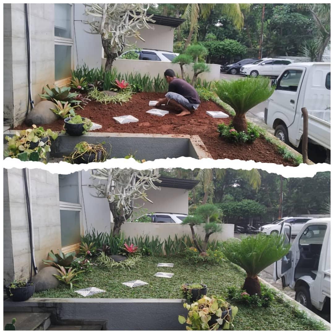 Jasa Tukang Taman Jakarta Termurah 2021